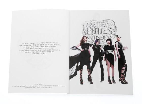 2NE1-SHINSEGAE-CHROME-HEARTS
